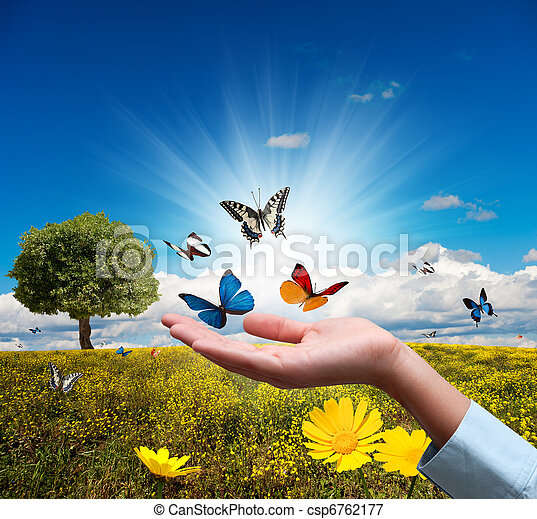 environnement, protéger - csp6762177