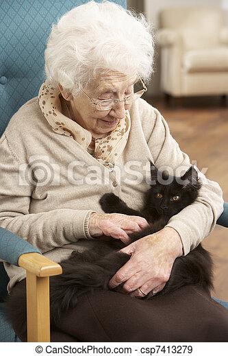 eny povolit, mazlíček, kočka, domů, starší, předsednictví - csp7413279