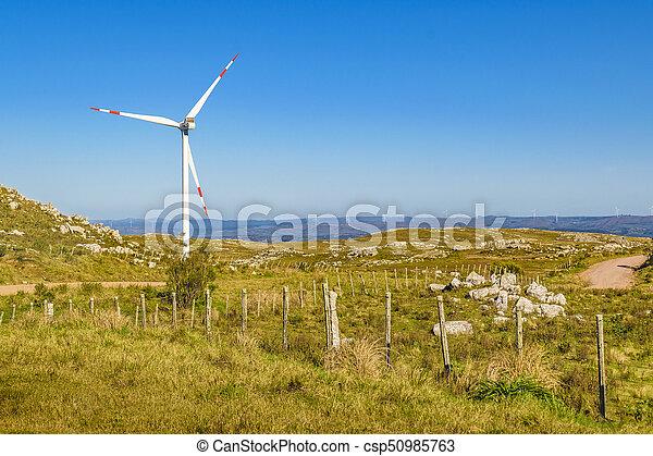 eolic, 風車, maldonado, 田舎, ウルグアイ - csp50985763