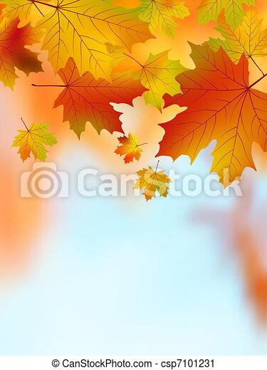 eps, amarela, leaves., outono, 8, maple - csp7101231
