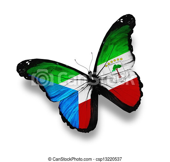 Equatorial Guinea flag butterfly, isolated on white - csp13220537