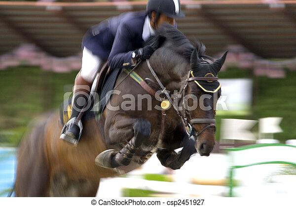 Equestrian - csp2451927