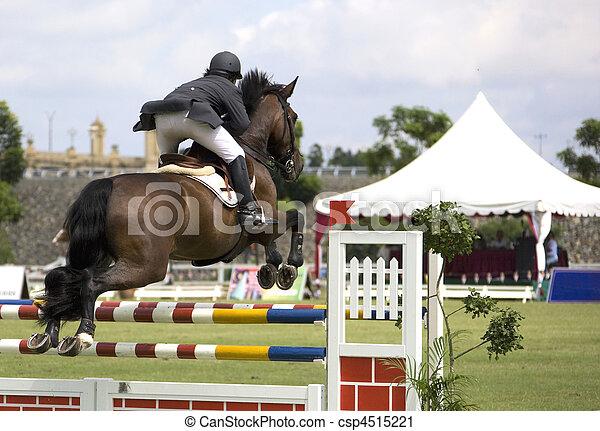 Equestrian - csp4515221