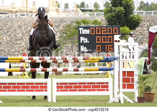 Equestrian - csp4515219
