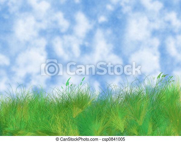 erba, cielo - csp0841005