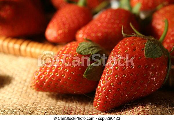 erdbeer, nahaufnahme - csp0290423