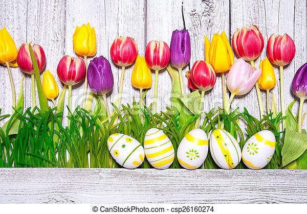 eredet, ikra, húsvét, színes, tulipánok - csp26160274