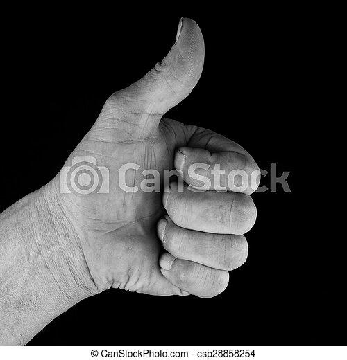 Männliche Hand zeigt Daumen für Erfolg - csp28858254