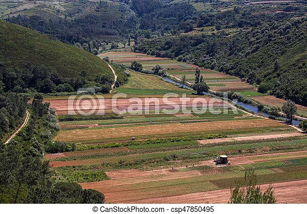 Ericeira Portugal. - csp47850495