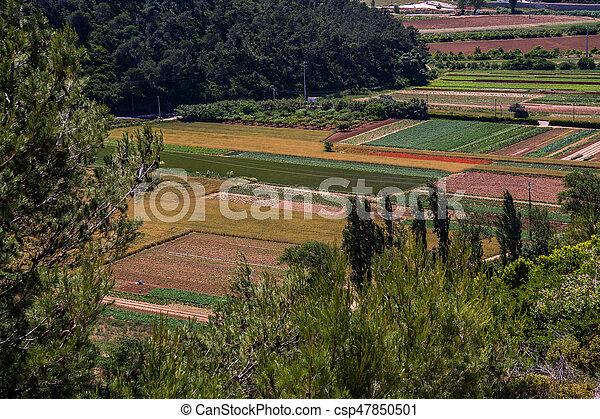Ericeira Portugal. - csp47850501