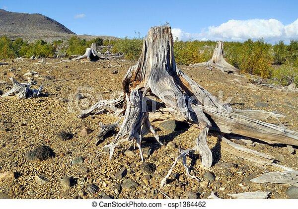 erosión de suelo - csp1364462