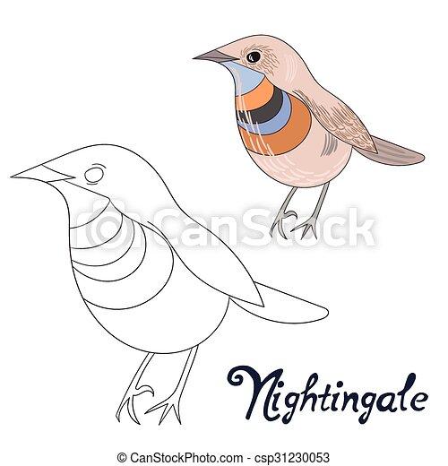 Erzieherisch, färbung, spiel, buch, nachtigall, vogel.... Clipart ...