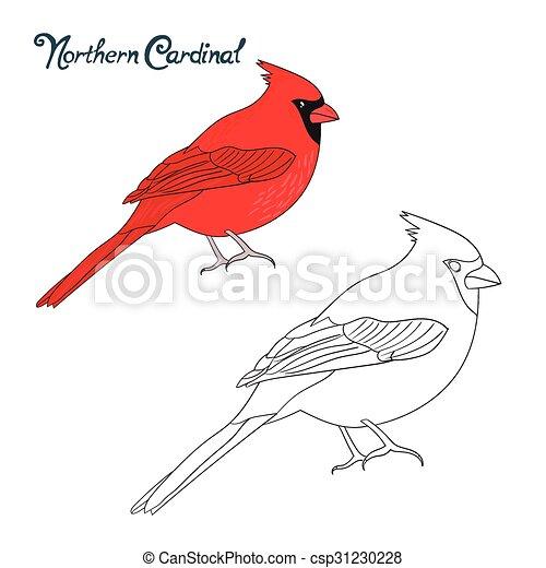 Erzieherisch, färbung, spiel, buch, kardinal, vogel.... Vektor ...