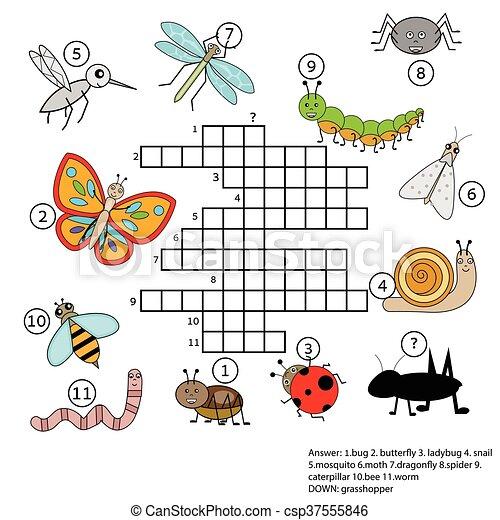 Erzieherisch, insekten, thema, kreuzworträtsel, spiel, answer ...