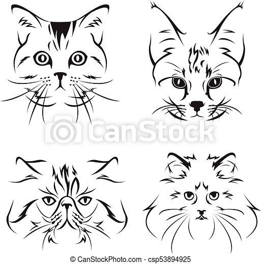 esboço, adorável, gato - csp53894925