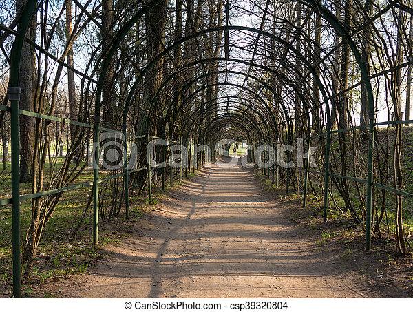 Arcos artificiales escénicos en el parque - csp39320804