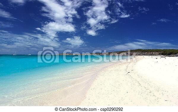 Playa escénica - csp0290292