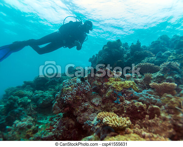 Silueta de buceo cerca del fondo del mar - csp41555631
