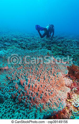 Silueta de buceo cerca del fondo del mar - csp39149156