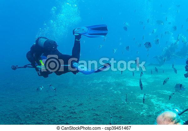 Silueta de buceo cerca del fondo del mar - csp39451467