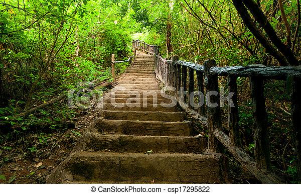 Escaleras de madera hasta el alto - csp17295822