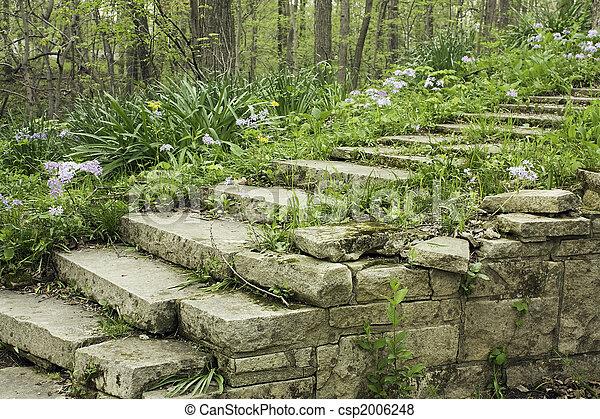 Escalier, jardin pierre, mur, ombreux, sentier. Escalier ...