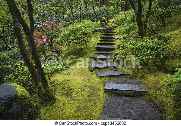 Escalier, jardin pierre, japonaise.