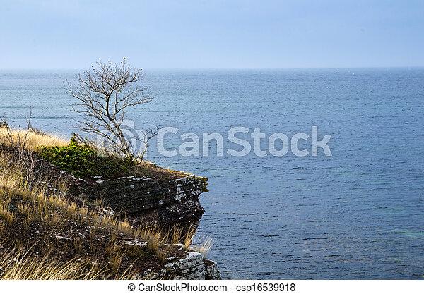 Paso en la costa - csp16539918