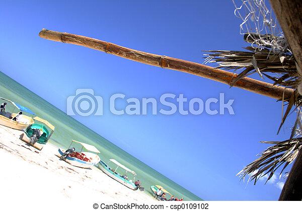 Escena de playa - csp0109102
