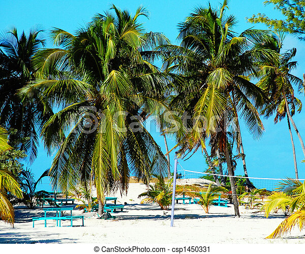 La escena de la playa - csp1450331