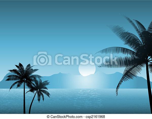 Escena tropical por la noche - csp2161968
