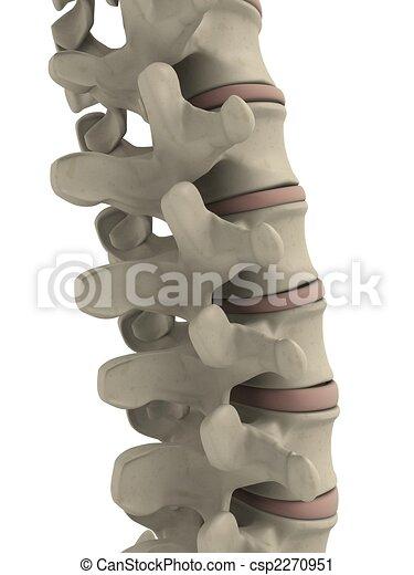 La espina humana - csp2270951