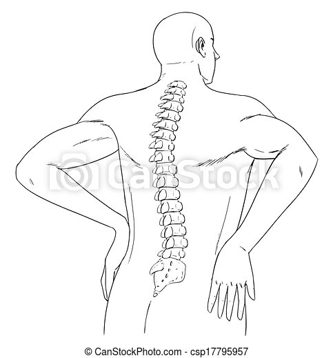 Espina humana - csp17795957