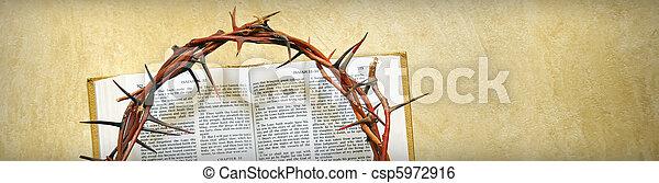 espinas, biblia, corona - csp5972916