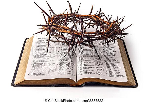 Santa biblia y corona de espinas aisladas en blanco.