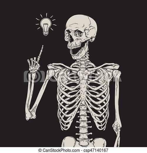 Esqueleto humano, encima, aislado, ilustración, idea, vector, fondo ...