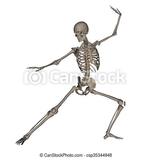 Esqueleto, render, -, pelea, humano, listo, 3d. Esqueleto, render ...