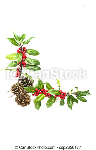 Holly y bayas rojas en la esquina - csp2658177