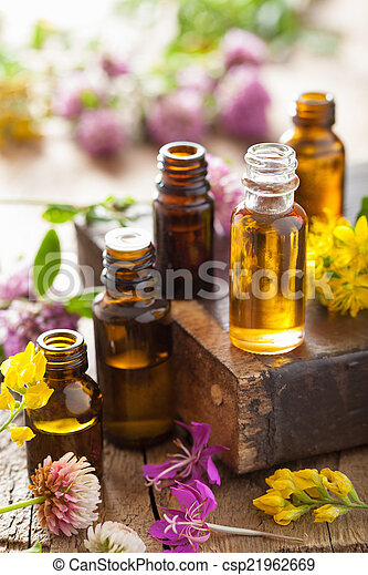 essential oils and medical flowers herbs  - csp21962669