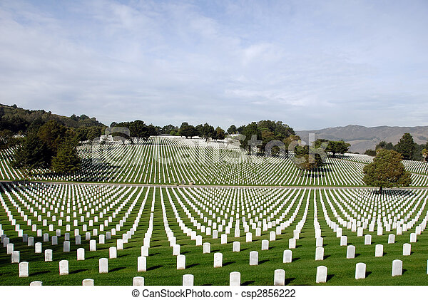 estados, nacional, unidas, cemitério - csp2856222