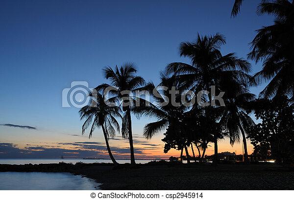 Key West Beach después del atardecer, Florida Keys USA - csp2945914