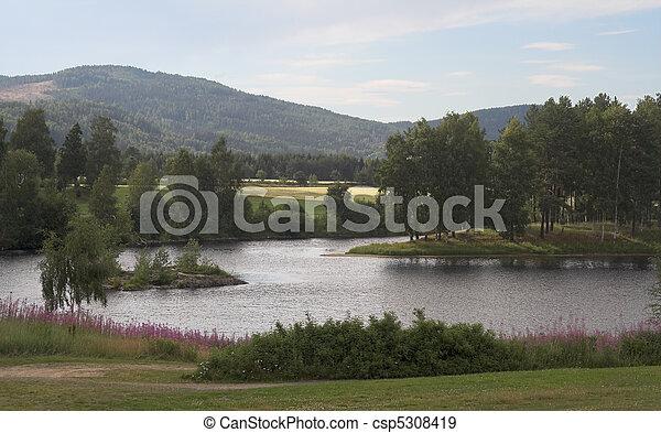 estate, paesaggio - csp5308419