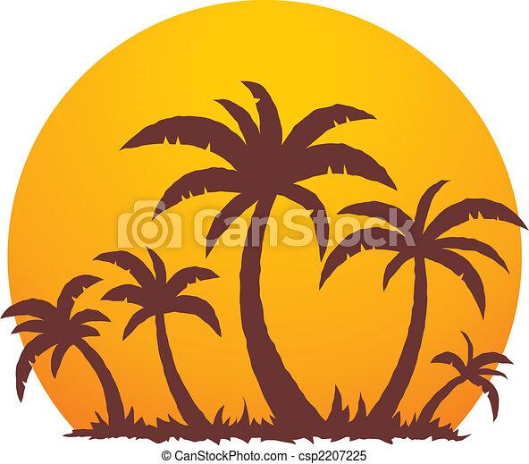 estate, palma, tramonto, albero - csp2207225