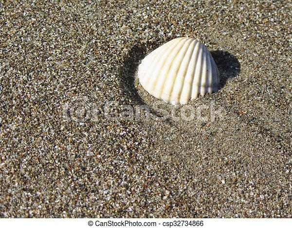 estate, sgusciare, sand., cima, fondo., mare, spiaggia, vista - csp32734866