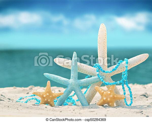 estate, spiaggia sabbia, starfish - csp50284369