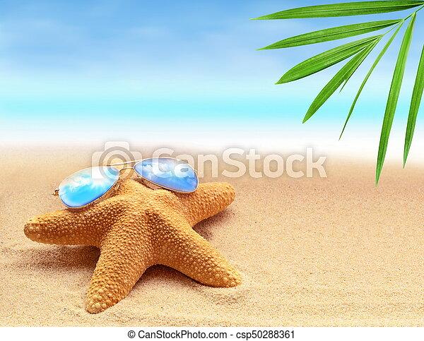 estate, spiaggia sabbia, starfish - csp50288361