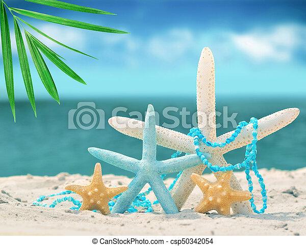 estate, spiaggia sabbia, starfish - csp50342054