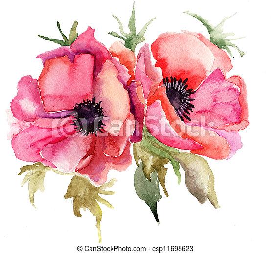 estilizado, amapola, flores, ilustración - csp11698623