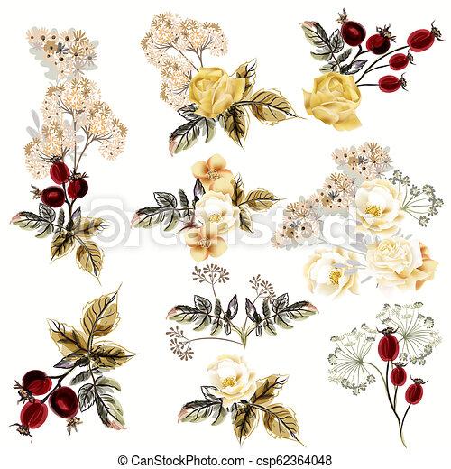 Gran colección de vectores flores realistas en estilo antiguo.eps - csp62364048