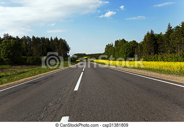 estrada rural, canola - csp31381809